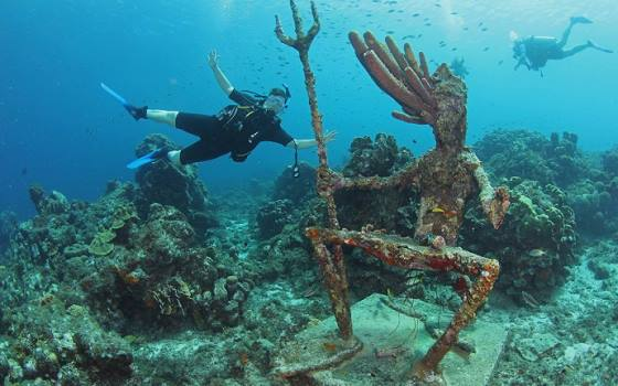 Westpunt - Divers