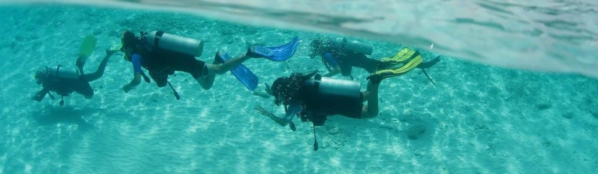 The PADI Rescue Course